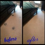 carpet stains before and after