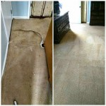 Carpet Services in Morristown TN